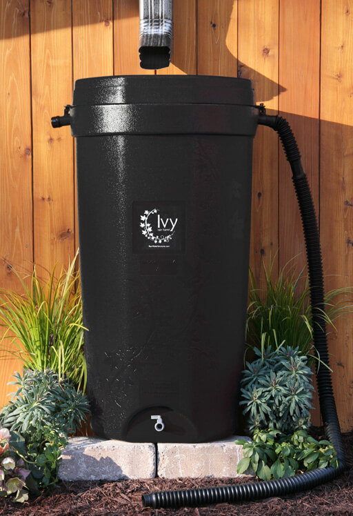 Water Conservation Program hosting rain barrel sale